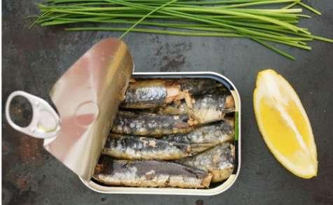 Rillettes de sardines ou tartinade de fèves