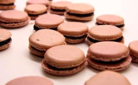 Macaron myrtille et chocolat blanc