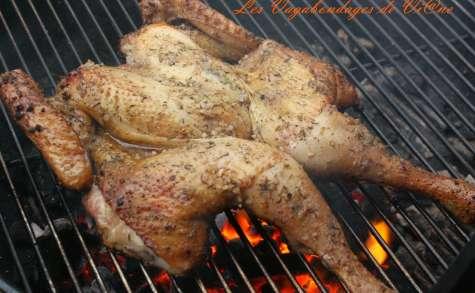 Poulet en crapaudine, au barbecue