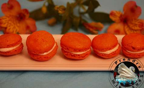 Macarons au saumon fumé et ricotta