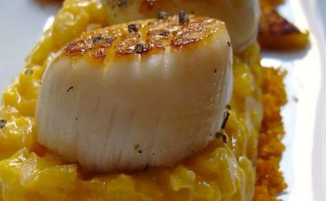 Coquilles Saint Jacques triple orange