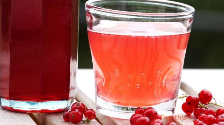 Sirop de groseille l 39 extracteur de jus recette par try this - Gelee de groseille avec extracteur de jus ...