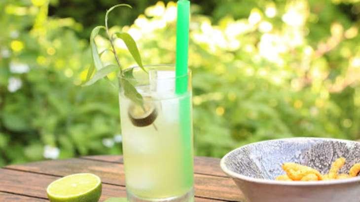 Cocktail Aquarium