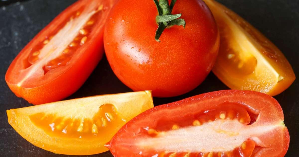 La tomate histoire de la tomate et ses nombreuses vari t s for Noctuelle de la tomate