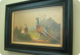 Victorian watercolour of pheasants