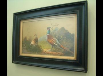 Victorian watercolour of pheasants