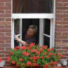 Fenster erfolgreich reinigen – Wie sich Verbraucher das Leben leichter machen