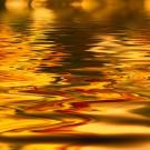 Golddruck auf Glas: die besondere Glasgestaltung