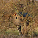 Baumhaus und Sandkasten bauen: Auf was Sie unbedingt achten sollten