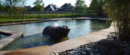 Quast Michael Garten- und Landschaftsbau 53359 Rheinbach Naturteich