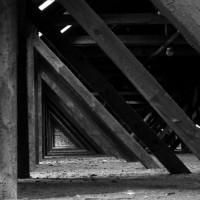 Schimmel im Dachstuhl: Ursachen und Maßnahmen zur Vorbeugung oder Entfernung