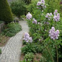 Wegeleuchten bringen Licht in Ihren Vorgarten