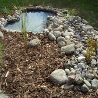 Die Teichbeleuchtung schafft schöne Effekte in Ihrem Garten