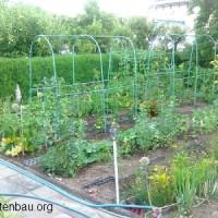 Gartenbewässerung planen – ein umfangreiches Unterfangen