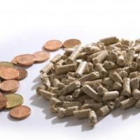 Pelletheizung: Durch den geringen Verbrauch von Brennstoffen langfristig Kosten sparen