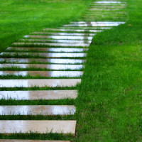 Einen Holzweg im Garten anlegen – das müssen Sie beachten