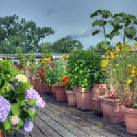 Eine Dachterrasse sorgfältig und gründlich planen