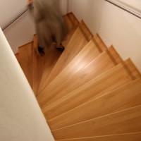 Diese Faktoren sind bei der Treppenplanung zu beachten