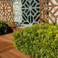 Der Bau der Holzterrasse auf Rasen