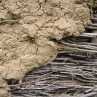 Wie wird Lehmputz aufgetragen?