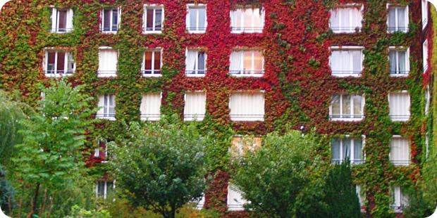 Erdanker der Fassadenbegrünung sorgt für permanente Spannung der Konstruktion