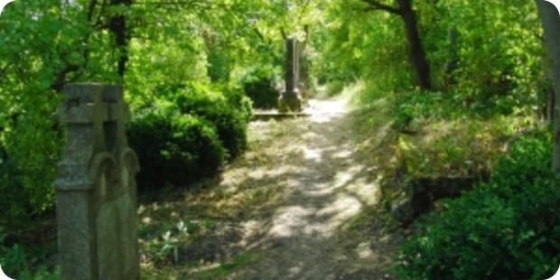 Grabbepflanzung Sommer –  Vielfältige & individuelle Gestaltung
