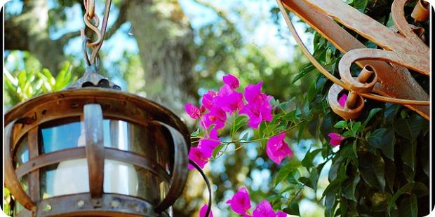Die ideale Gartenbeleuchtung für jeden Zweck!