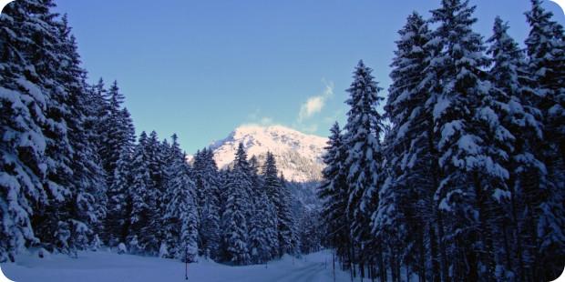 Schneeketten für Lkw: Was müssen Sie beachten?