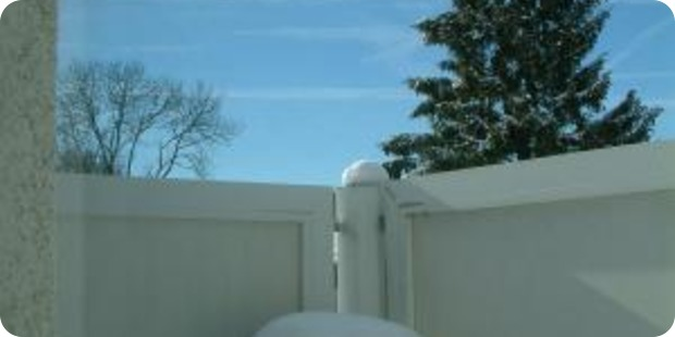 Wie winterfeste Balkonpflanzen vor Frost und Trockenheit geschützt werden können