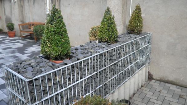 Evergreen Gartenbau gartengestaltung schlegel in prath gartenbau org