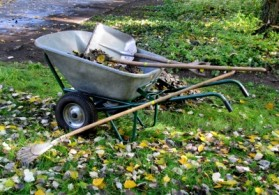 Gartenpflege Preise Richten Sich Nach Stundensatz Des