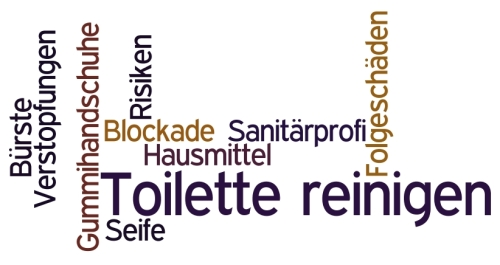 toiletten reinigen toiletten controleren en reinigen stap with toiletten reinigen quelle sfb. Black Bedroom Furniture Sets. Home Design Ideas