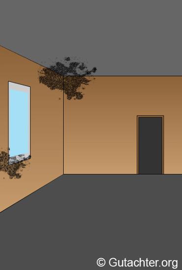 schimmelsporen messen und gesundheitliche risiken bek mpfen. Black Bedroom Furniture Sets. Home Design Ideas