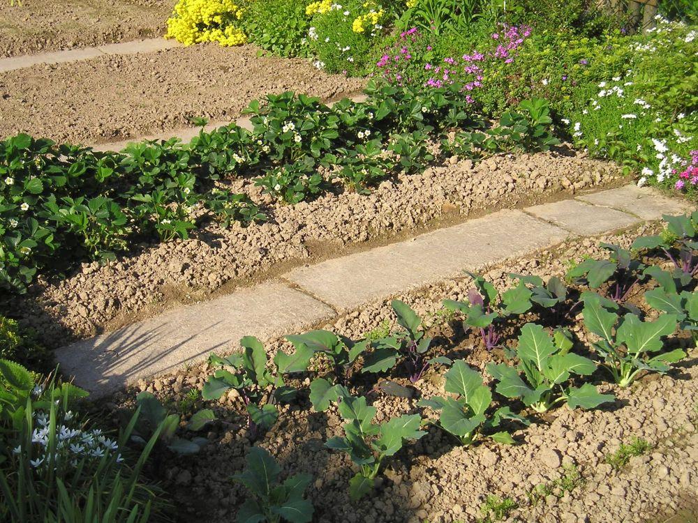 gartenbau | beetplatten aus kunststoff vereinfachen die beetpflege, Hause und Garten