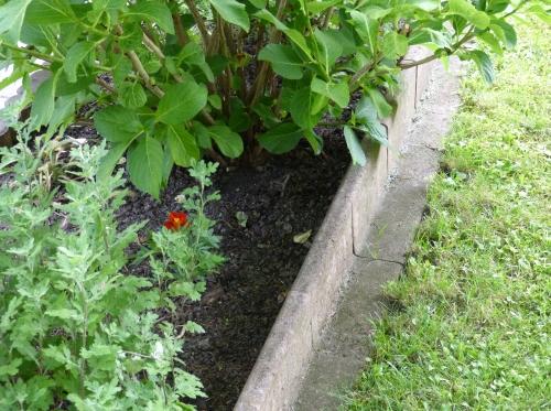 Randsteine setzen tipps tricks - Garten strukturieren ...