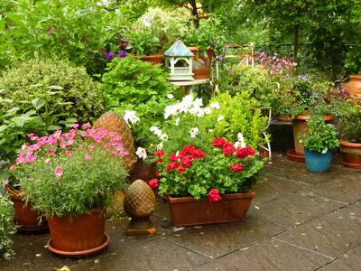 ein wohnzimmer im freien mit terrassenpflanzen zur wohlf hloase. Black Bedroom Furniture Sets. Home Design Ideas