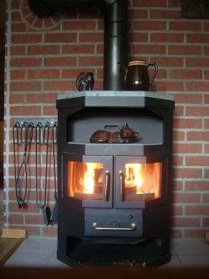 heizen mit biomasse geld sparen und die umwelt schonen. Black Bedroom Furniture Sets. Home Design Ideas