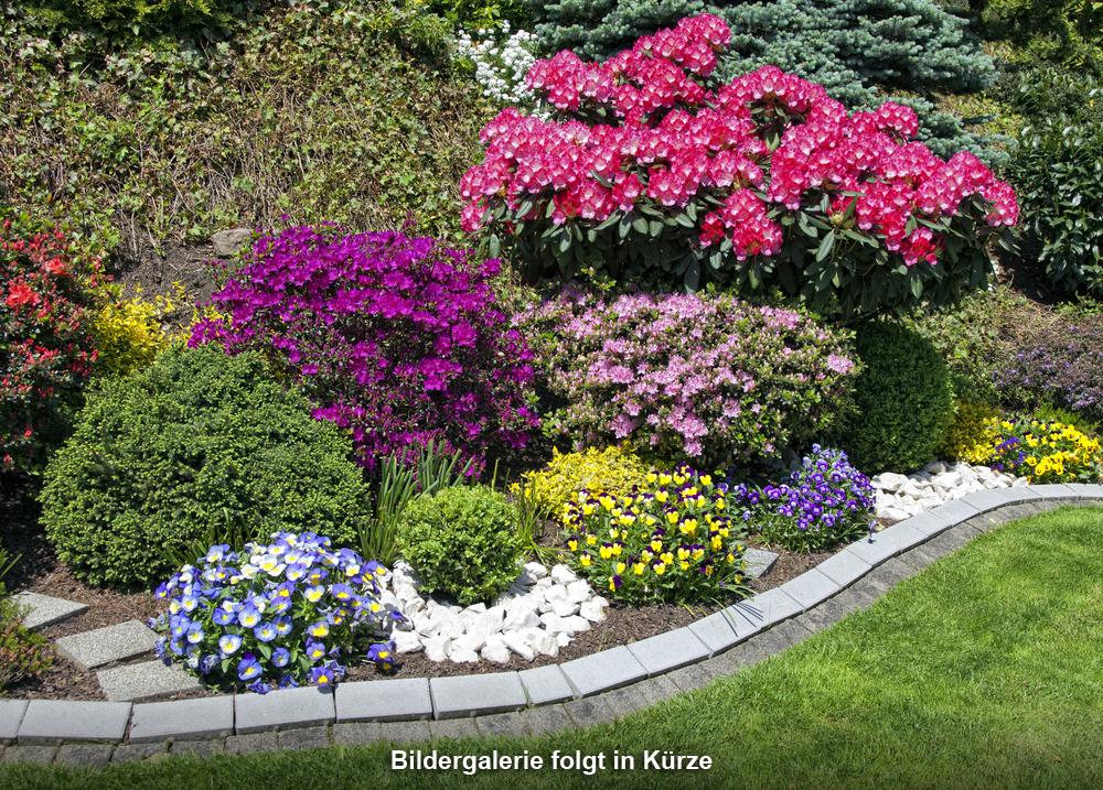 Peter Hamacher Garten- und Landschaftsbau in Dormagen