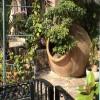Mediterrane Gartendeko: Tipps und Tricks
