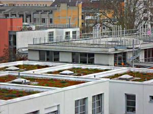 Bevor Ihr Dach zum Problemfall wird, lassen Sie rechtzeitig eine Teilsanierung oder eine umfassende Dachsanierung am Flachdach vornehmen. © Dachdecker.com