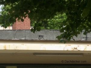 Man sollte sich bereits im Vorfeld einer Dachsanierung Gedanken machen, wie man die alte Dachpappe entsorgen kann. © Dachdecker.com