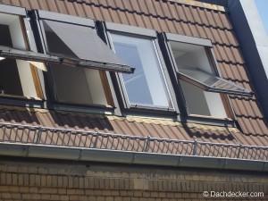 langlebigkeit und gutes preis leistungs verh ltnis zeichnen dachpfannen aus. Black Bedroom Furniture Sets. Home Design Ideas