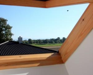 Holzfenster aus Douglasie