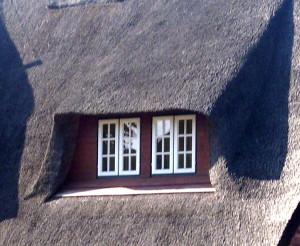 Schimmel an Holzfenstern sollte fachmännisch beseitigt werden. Zur dauerhaften Lösung des Problems ist auch eine gründliche Ursachenforschung notwendig. © Fensterbau.org
