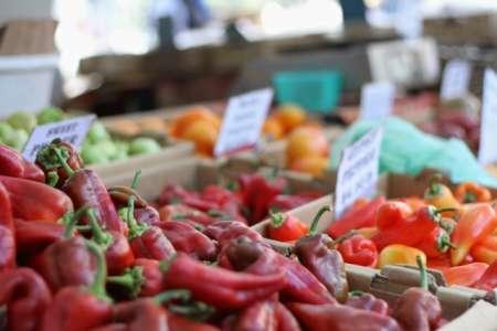 Farmers' Market Tour: A Trip to San Rafael