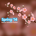 Force.com Spring 14 Release Developer Preview