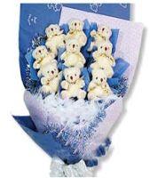 9 Chromatic Bears Bouquet