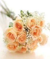 12 Peach Roses Bouquet