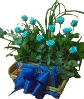 12 Blue Roses Basket