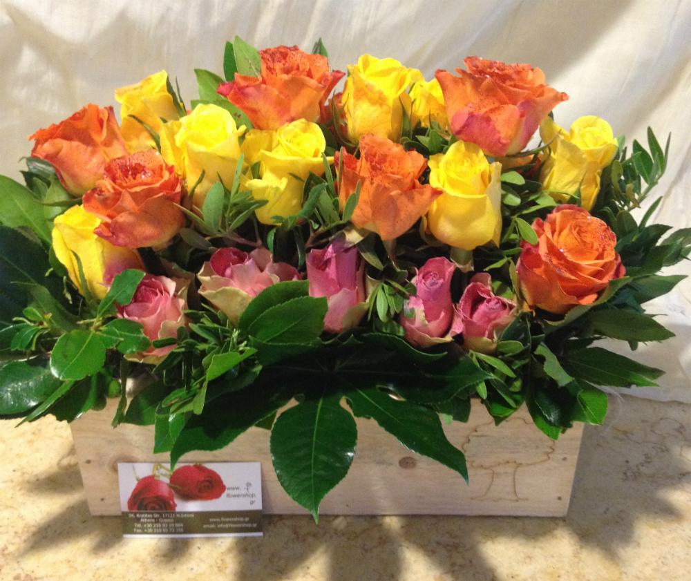 Roses Fiesta